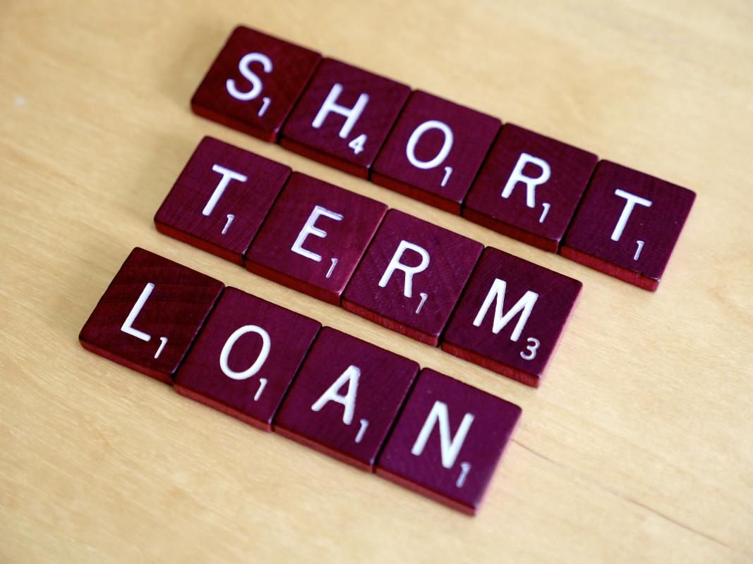 Micro Loans Loan Application