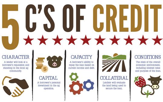 Loan_application_.the_five_Cs_of_credit.